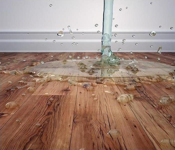 Water Damage SERVPRO of Cheatham, Robertson and Dickson Counties Water Damage Process Overview