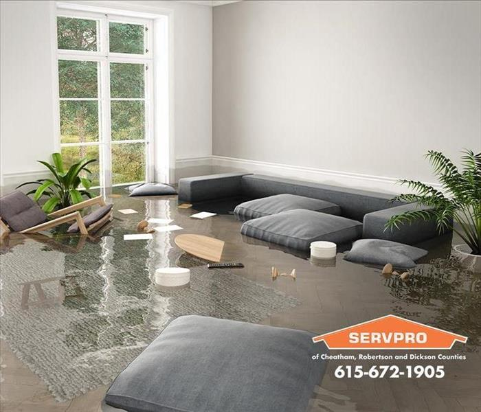 Storm Damage SERVPRO® of Cheatham, Robertson and Dickson Counties – The Risks of Standing Water