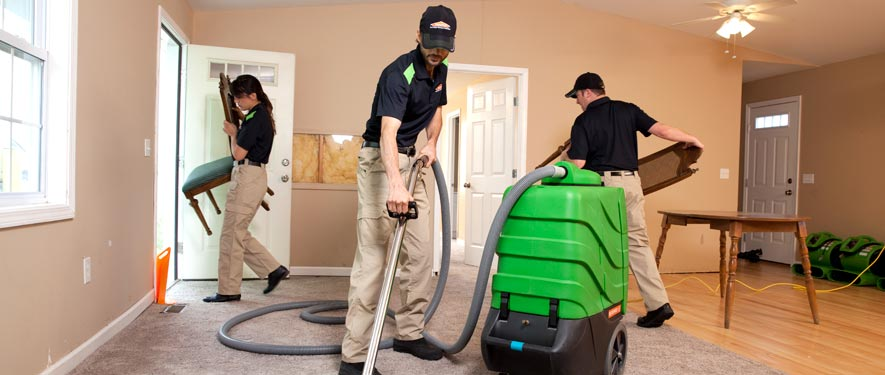 Springfield, TN cleaning services