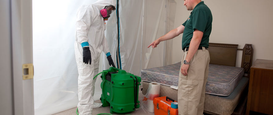 Springfield, TN mold removal process